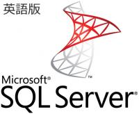 Microsoft SQL Server Standard Edition 2019 英語版 Open Business ライセンス 228-11477