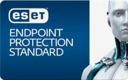 ESET Endpoint Protection Standard ライセンス 500-999